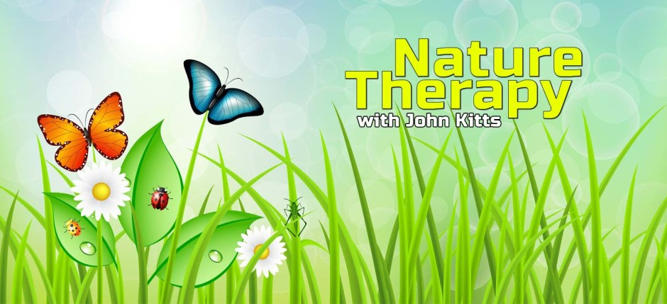 nature epizody